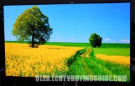 Samsung 55ES9500 OLED TV