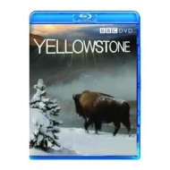 Yellowstone BluRay