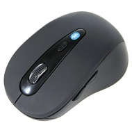 CODi A05001 mice