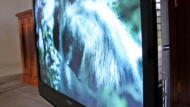 Kogan 42-inch 1080p LCD TV