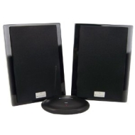 CES20 Deluxe Wireless Indoor Loudspeakers - Black
