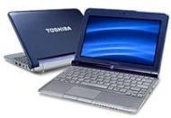 Toshiba Mini Netbook Slip Case