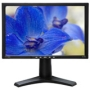 "DS-245W 24"" LCD Monitor (6 ms - 16:10 - 1920 x 1200 - 16.7 Million Colors - 500 Nit - 1000:1 - Speakers - DVI - VGA - USB - Black)"