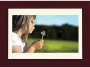 eMachines DPF-1331 - 13-inch Digital Picture Frame - 1366 x 768 - 128 MB