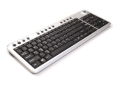Scorpius N2T Wireless Keyboard with Trackball 2.4GHz MCE (USB - Black, Silver)