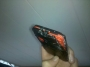 HTC Droid Incredible Caught On Fire