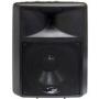 PylePPHP1590 Main / Stereo Speaker