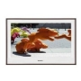 "Sony Bravia KDL-E4050 Series TV (26"",32"",40"")"