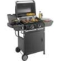 2 Burner Gas BBQ with Side Burner and Cabinet