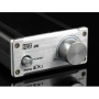 MUSE M20 EX TA2020 T-Amp Mini Stereo Amplifier 20WX2 Gold
