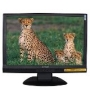 "Envision Professional G218a1 - LCD display - TFT - 22"" - widescreen - 1680 x 1050 / 60 Hz - 300 cd/m2 - 700:1 - 5 ms - 0.282 mm - DVI-D, VGA - speake"