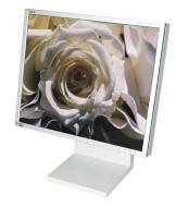 NEC MultiSync LCD1880SX