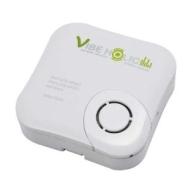 Vibeholic Vibrating Speaker System