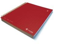 Livescribe Three Subject Notebook