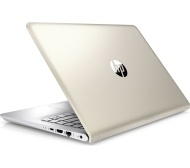 "HP Pavilion 14-bk064sa 14"" Laptop - Silk Gold"