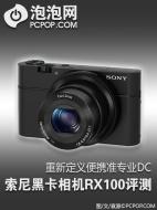Fujitsu Primergy RX100 S6