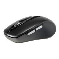 Kingwin KW-06 mice