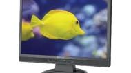NEC LCD22WMGX