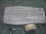 Logitech G11 Gaming Keyboard