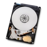 HGST Travelstar 2.5-Inch 1TB 5400RPM SATA 6Gbps 8MB Cache Internal Hard Drive (0J22413) (HTS541010A9E680)