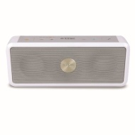 TDK Life On Record A33 Weatherproof Wireless Bluetooth Speaker (White)