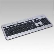 BTC 6100C 86-Key Ultra Slim Mini & Compact MultiMedia Keyboard without Numeric Keypad (Silver/Black) with USB & PS/2 Adapter