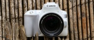 Canon EOS Rebel SL3 / Canon EOS 250D