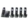 Panasonic P172-3006