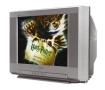 SONY KV-20FS100 Trinitron(R) Color TV